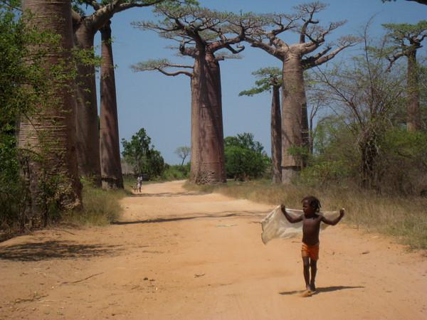 Поехаи на Мадагаскар!