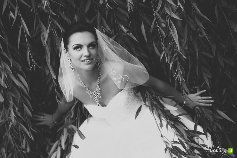 Wedding is - фотограф Сергей Модин