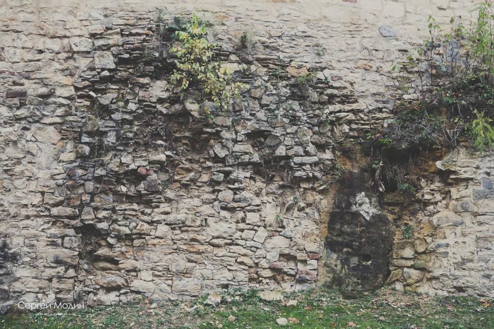 photo (147 of 191)