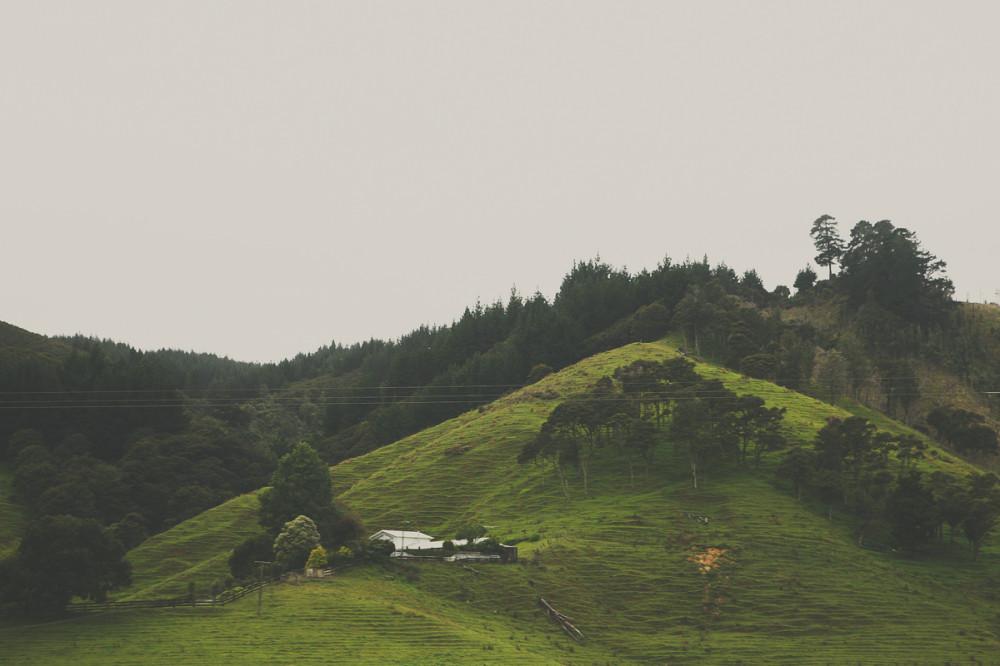 Пейзаж за окном - Новая Зеландия