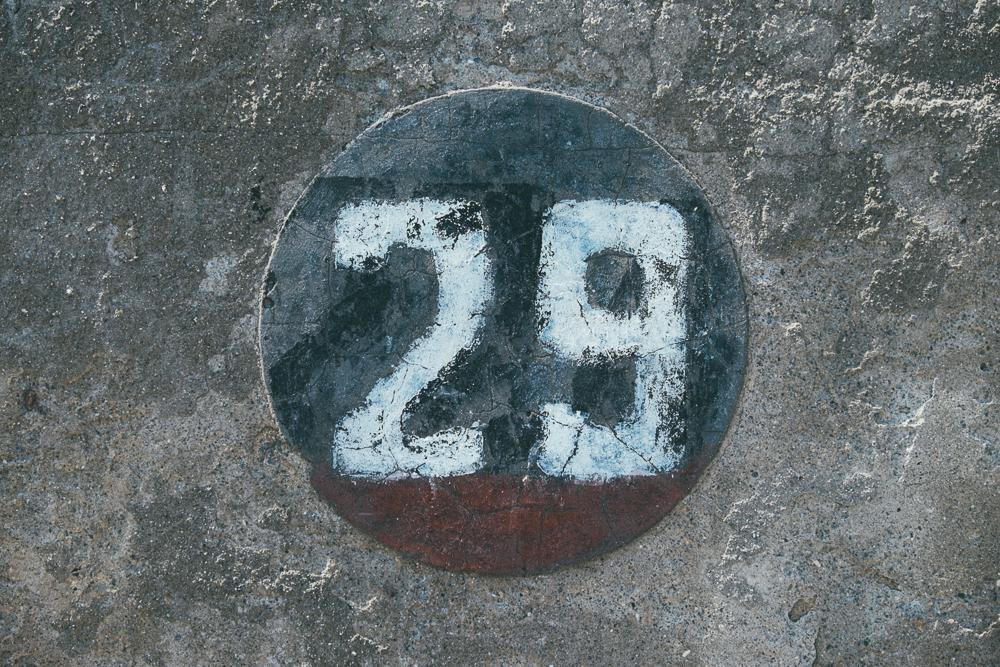 photo (16 of 28)