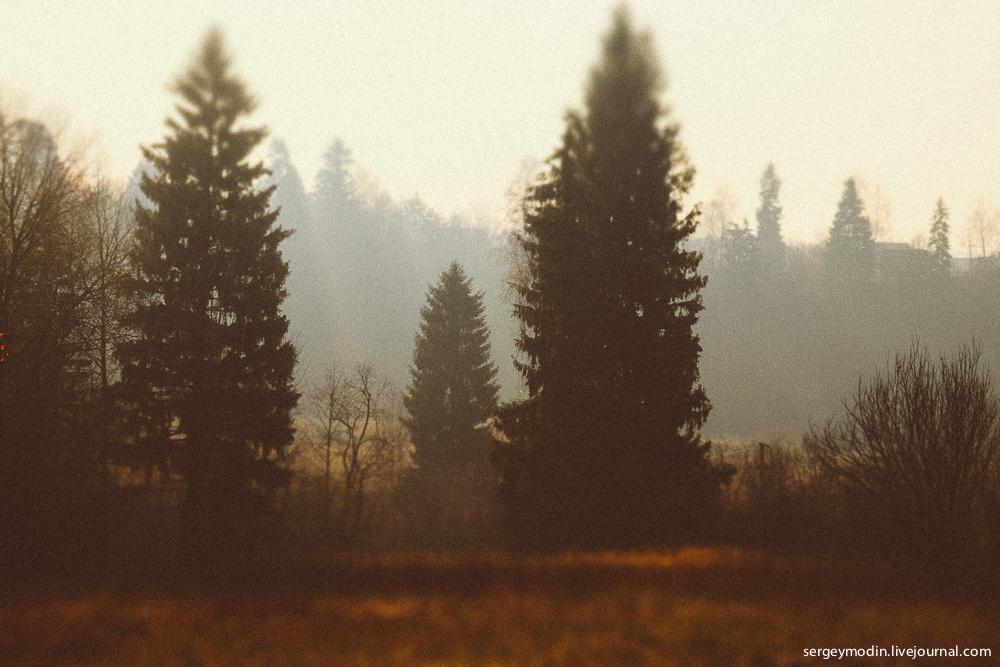 photo (2 of 71)