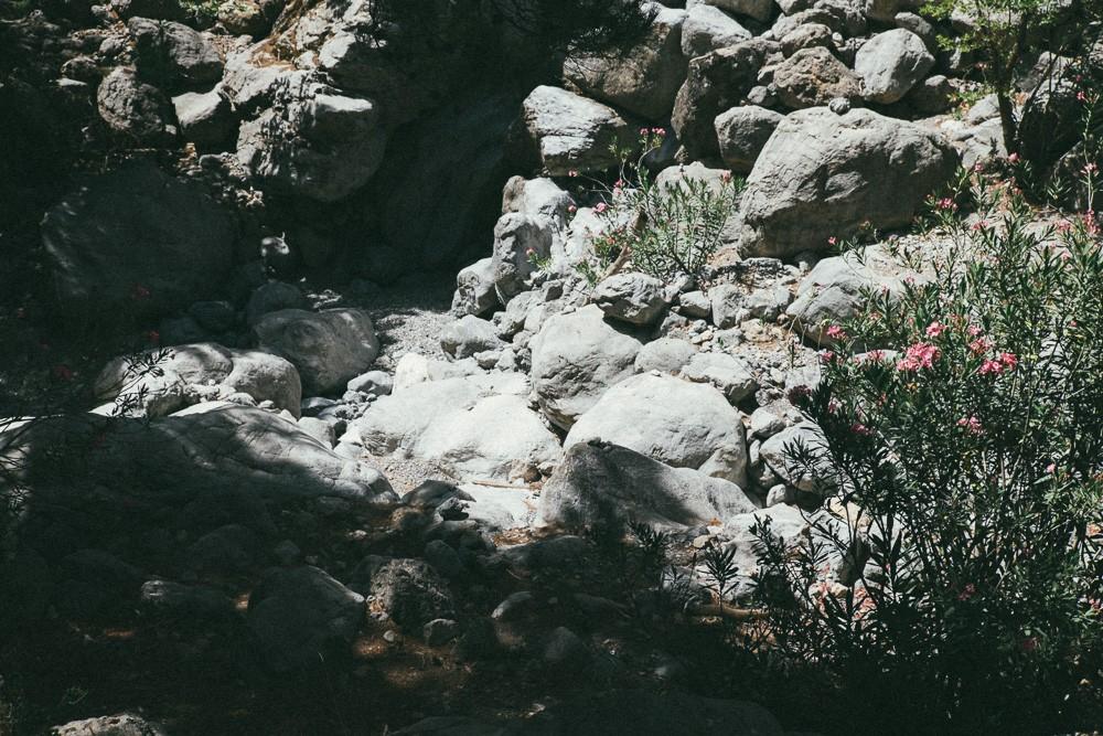 photo (30 of 123)