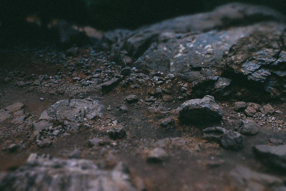 photo (18 of 85)