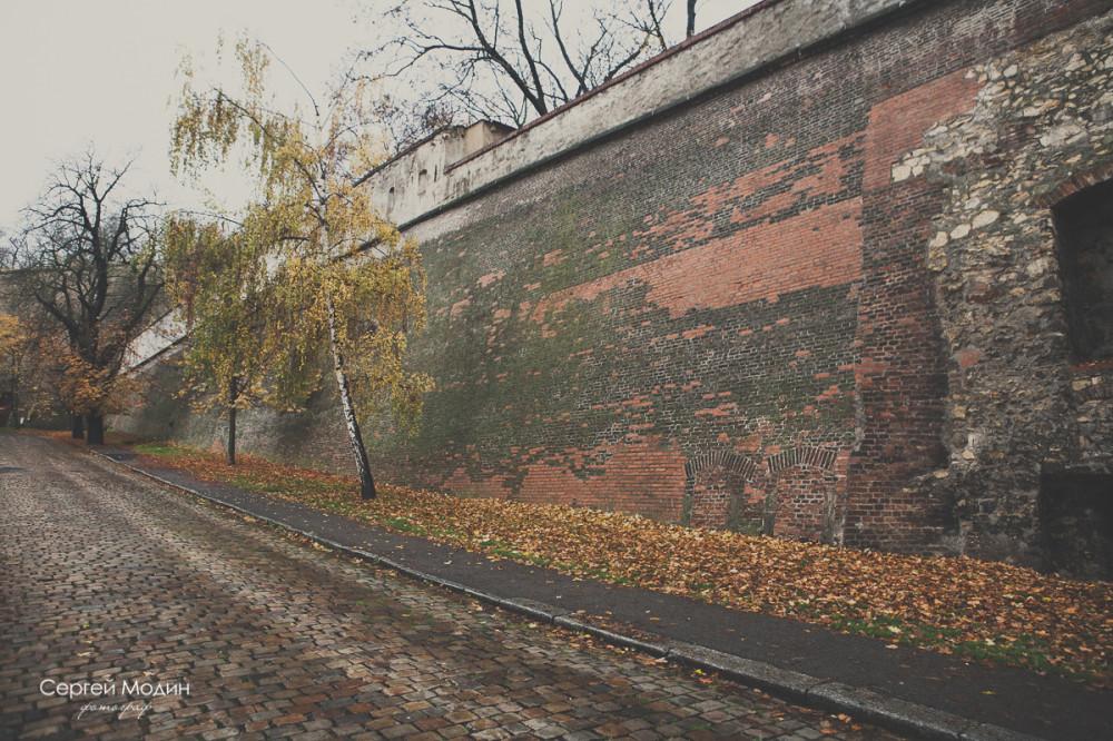 photo (54 of 191)
