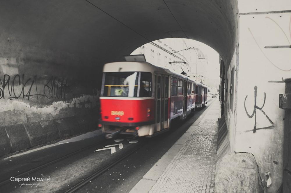 photo (76 of 191)