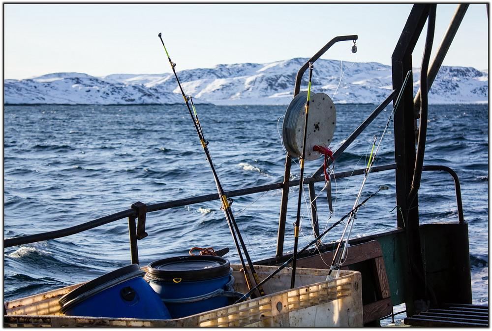 форум рыбаков баренцева моря
