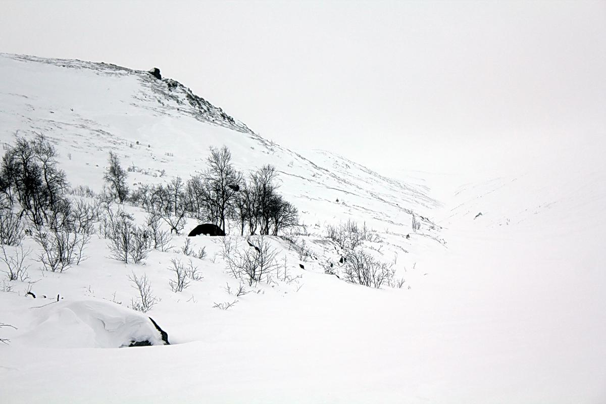 Базовый лагерь )