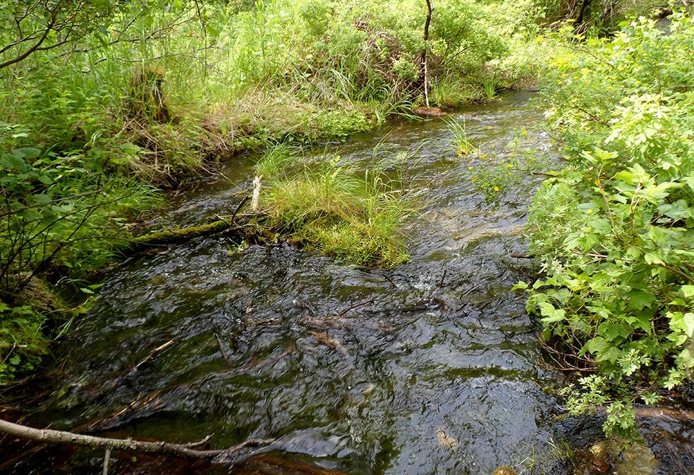Прозрачные воды Тюрима