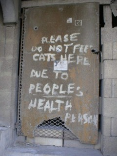 Don't give a food to cats!