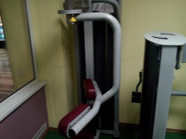 твистер машина Rotary Torso