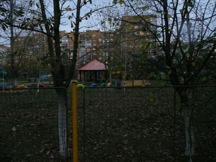 P1100662