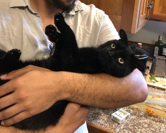 Он любит, когда его обнимают, как ребенка