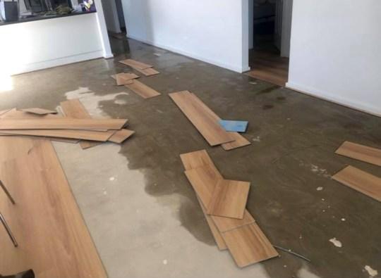 Только часть ущерба, нанесенного Евой (Фото: агентство новостей Caters)