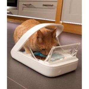 Кормушка, которая открывается только для определенной кошки, ориентируясь на микрочип
