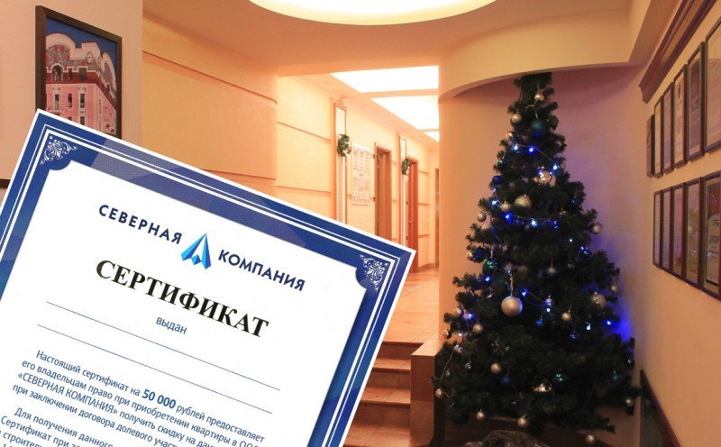 Новогодний офис и сертификат.jpg