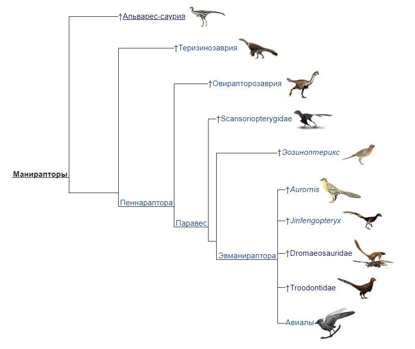 Даже мелкие динозавры вымерли. Почему? Screenshot_17
