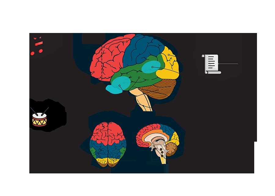 brain-02-02-kopia-c86d053ff3