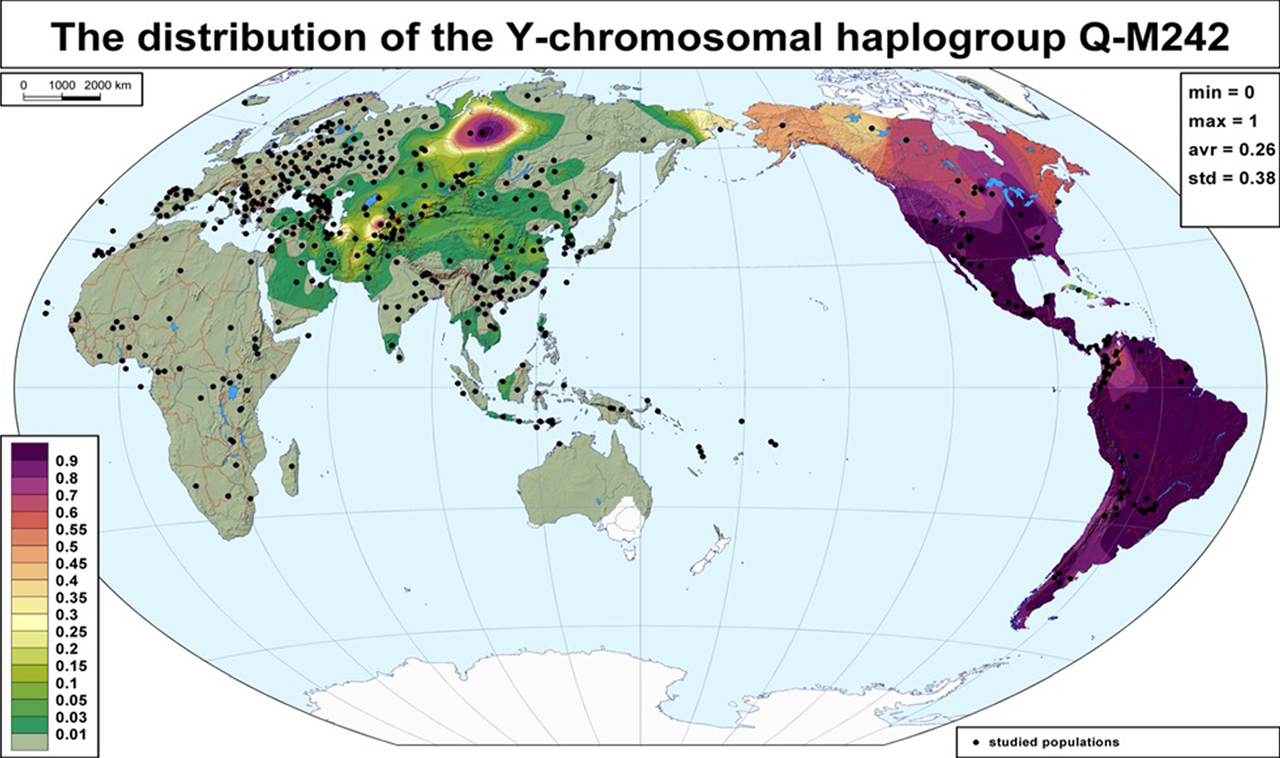 1280px-Global_frequency_distribution_map_of_haplogroup_Q-M242_(Y-DNA)