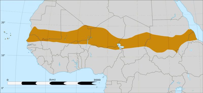 1920px-Sahel_Map-Africa_rough