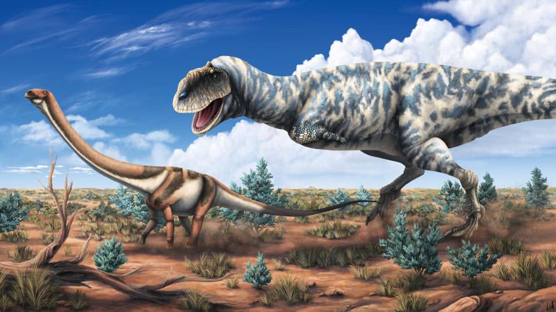 Majungasaurus охотится на молодого Rapetosaurus. Мадагаскар