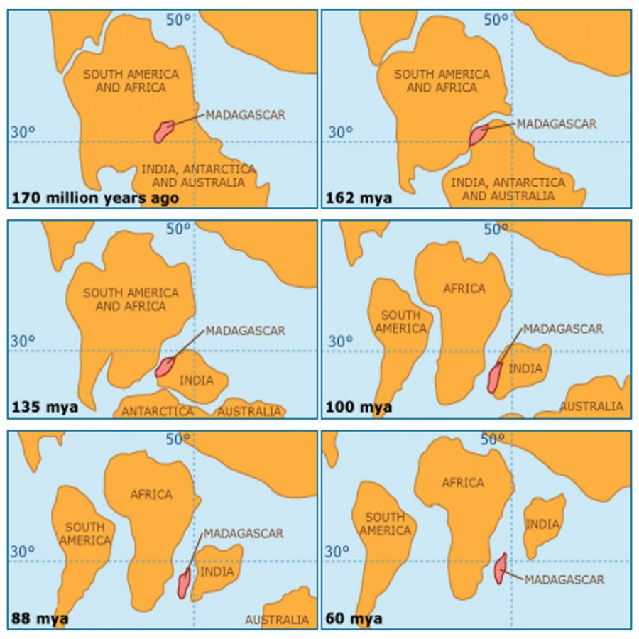 plate-tectonics-3