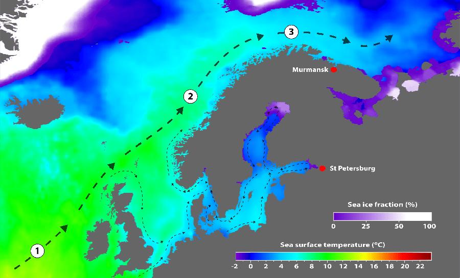 temperaturnaja-karta-skandinavii