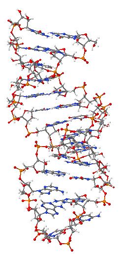 Pre-mRNA-1ysv