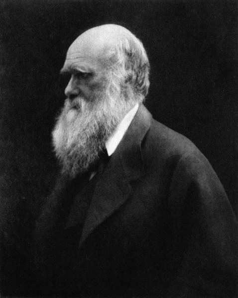 800px-Charles_Darwin_by_Julia_Margaret_Cameron_2
