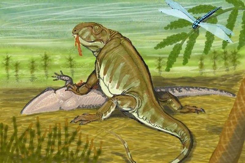 800px-Pantelosaurus