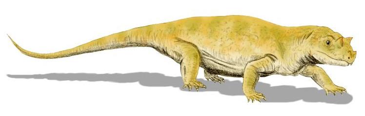 Tetraceratops_BW