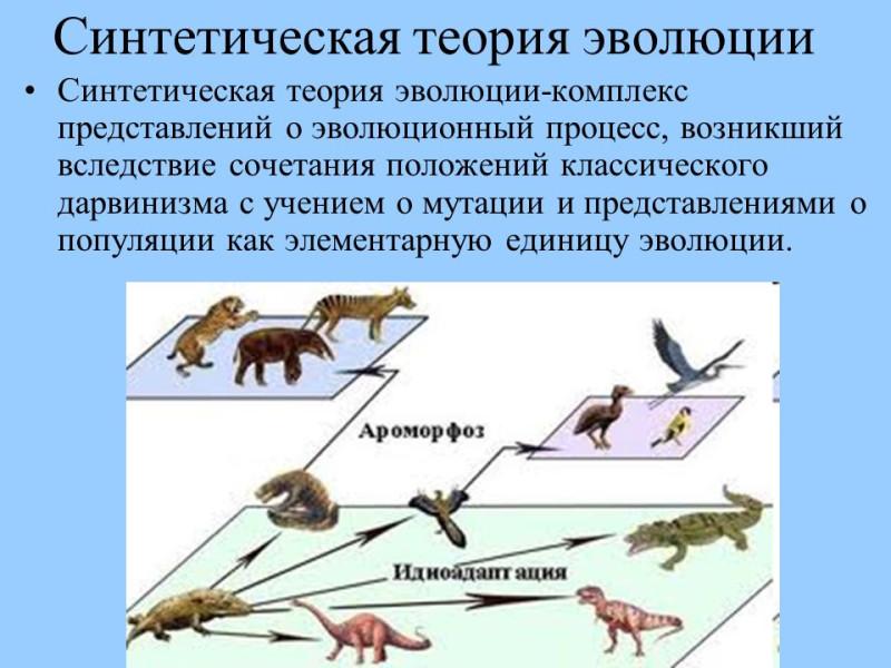 Синтетическая+теория+эволюции