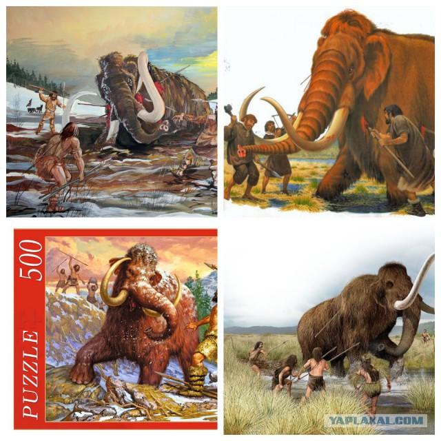 Про мамонтов - как на них охотились, как они вымерли.