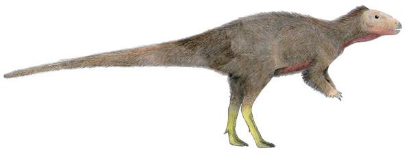 Trinisaura2