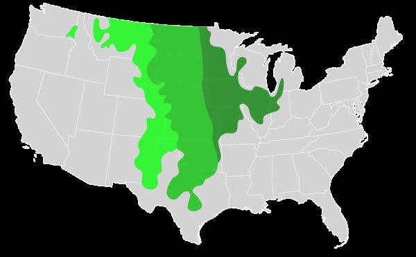 1024px-United_States_Prairies.svg