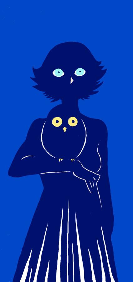 Owl(s)
