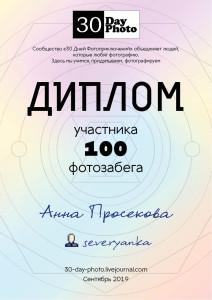 diplom_100_13