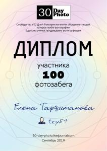 diplom_100_15