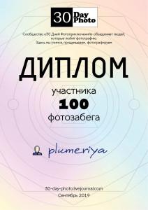 diplom_100_new