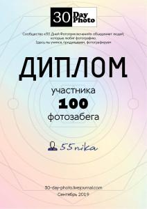 diplom_100_new_nika