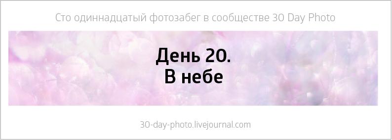 19-312