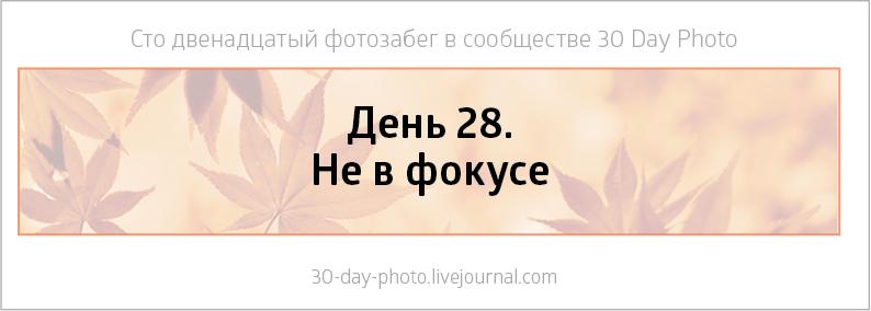23-295
