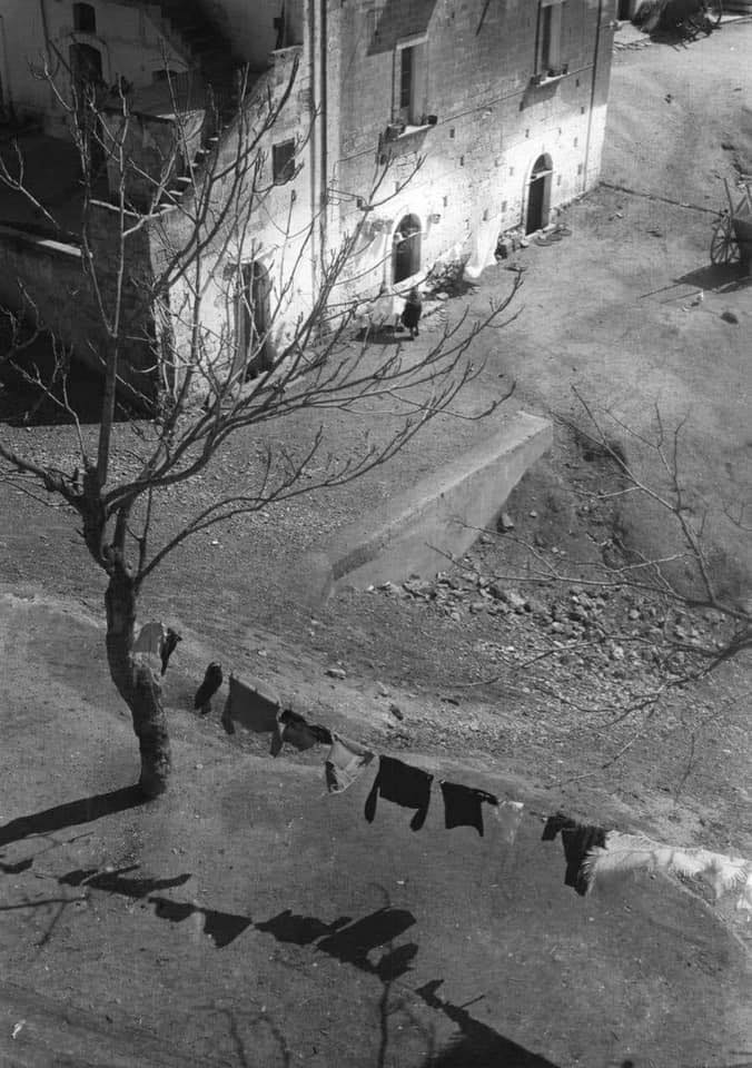 Edwin Smith, 1963
