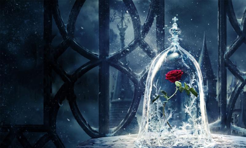 Вечные цветы (стабилизированные) роза под куполом