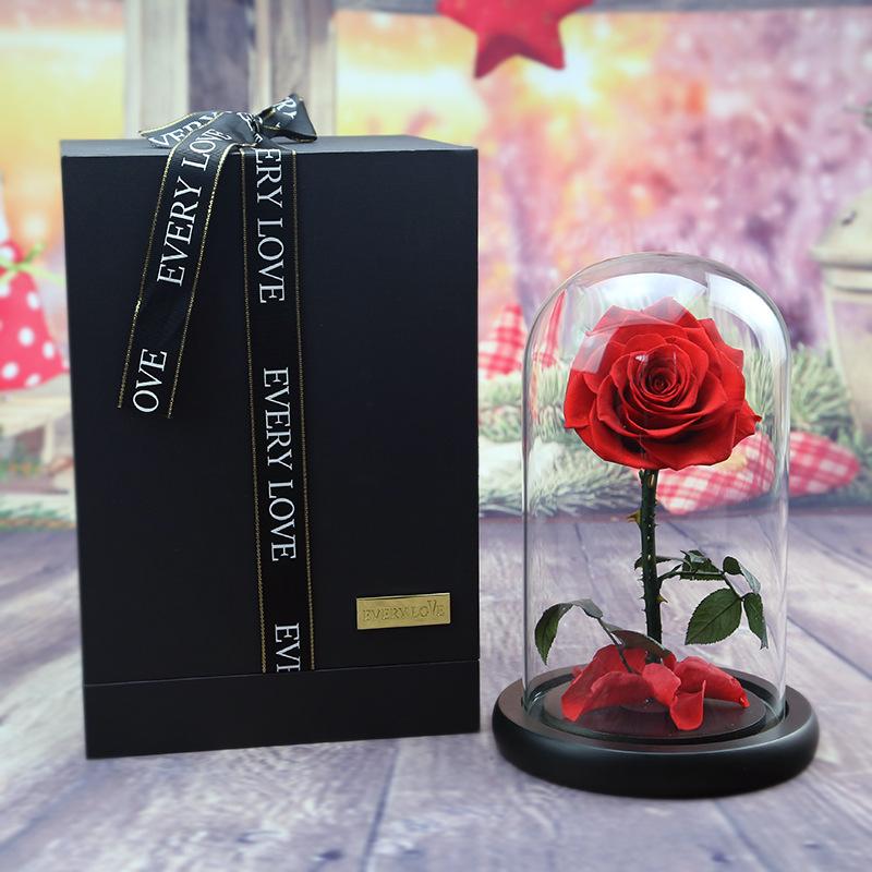 Красная роза в колбе под стеклом маленький принц, красавица и чудовище