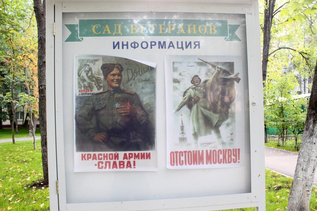 Мои_итоги_2014-198