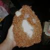 Exhibit 3: auburn Pia sheep