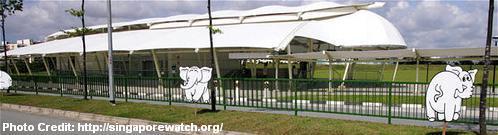 Белые Слоны