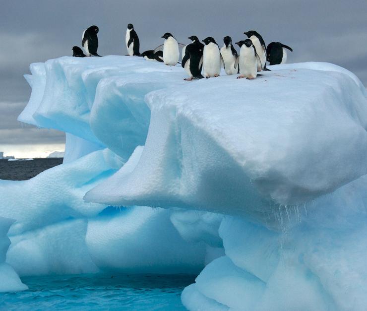 09_antarktika