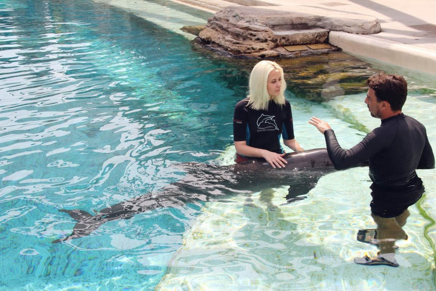 Секс дельфина с девушкой в басейне фото 671-452